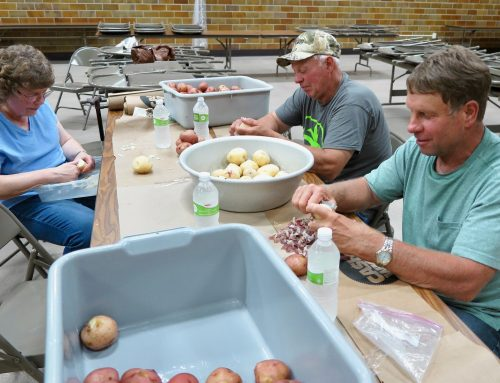 Many hands made quick work of the 400 pounds of potatoes